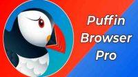 Download Apk Puffin Pro Versi Terbaru 2021