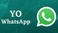 Link Download YOWhatsApp Apk Terbaru